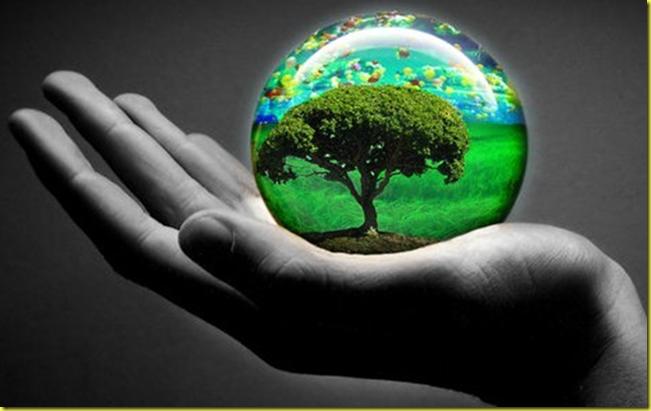 Desguaces y otras formas de contribuir al Medio Ambiente